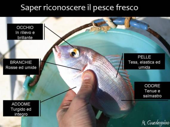 Come capire se il pesce è fresco: le regole per riconoscere