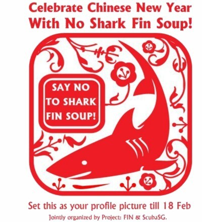 Chinese New Year -  No Shark Fin Soup