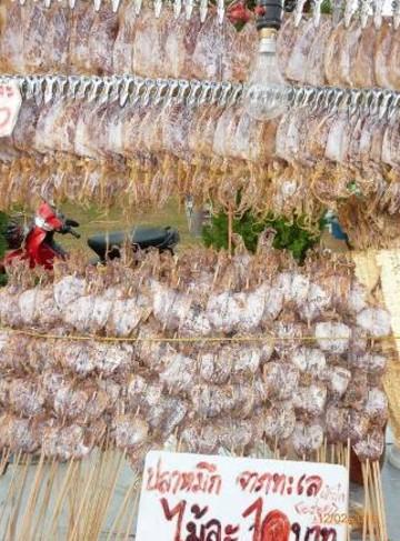 Commerci illegali - Colorazione cavallucci marini in ...